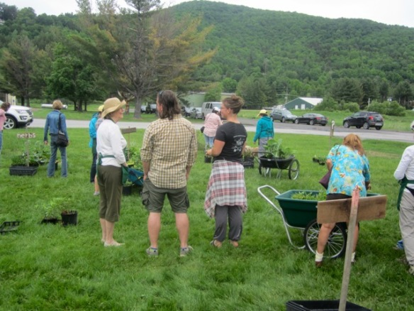 Customers & plant sale helpers